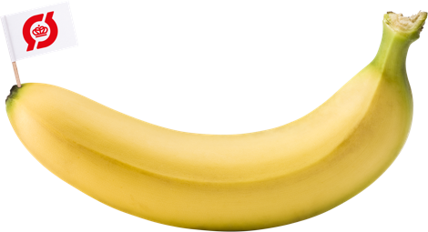 Økologisk banan