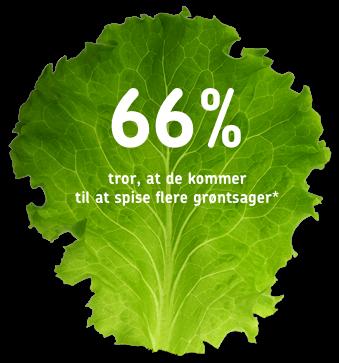Salatblad med statistik
